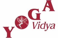 Yoga-Vidya-Logo-Rot